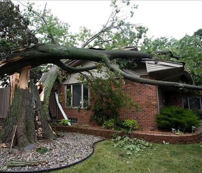 A large tree fell on a brick house.