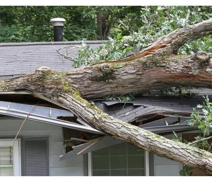A tree has fallen onto a house during a storm.