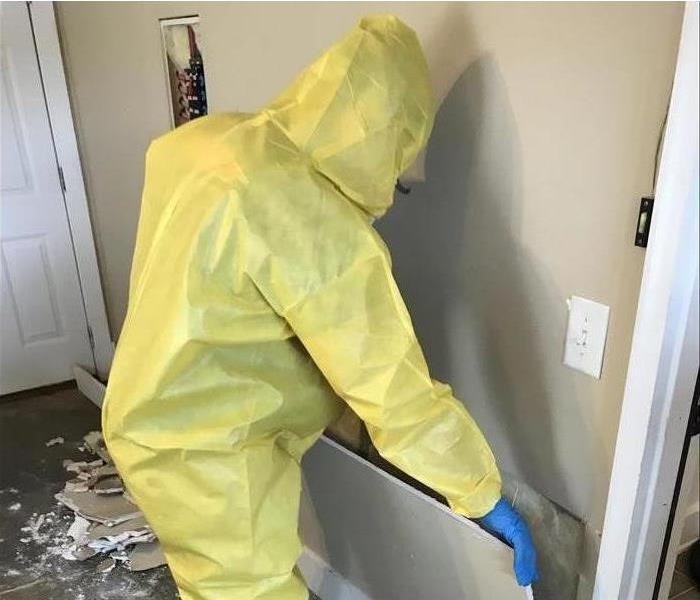 Mold Remediation Indoor Air Quality in Lincoln NE